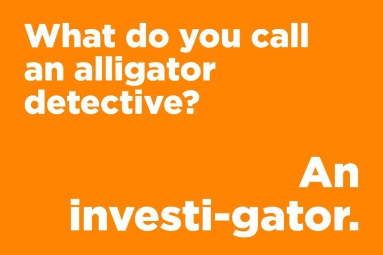 alligator detective