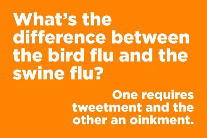 bird flu swine flu