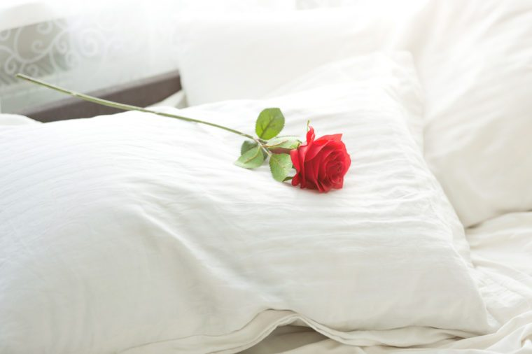 Closeup photo of red rose lying on white pillow at bed