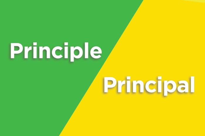 principle principal