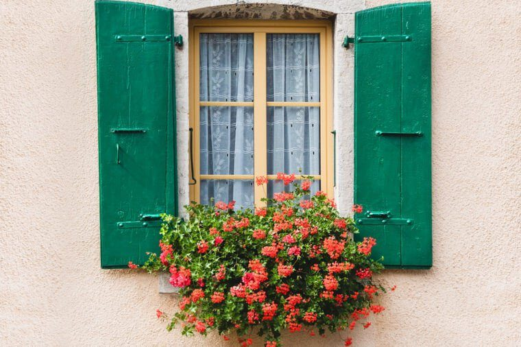 Vintage window with flowers and shutters in Switzerland