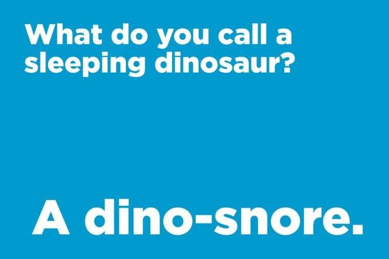 sleeping dinosaur