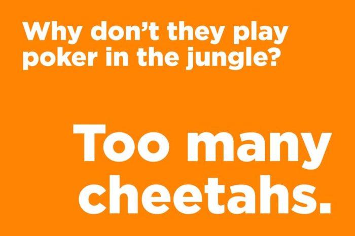 poker jungle