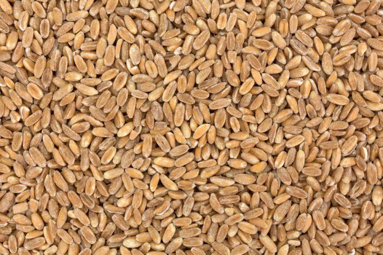 A very close view of farro organic grain.