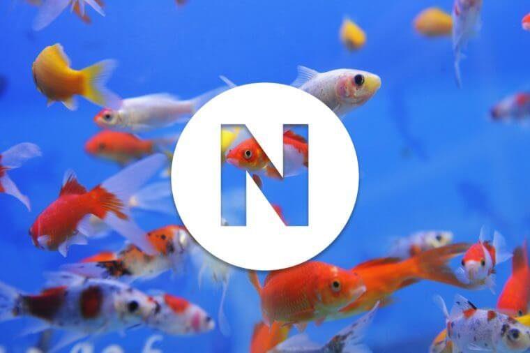 English alphabet letter N