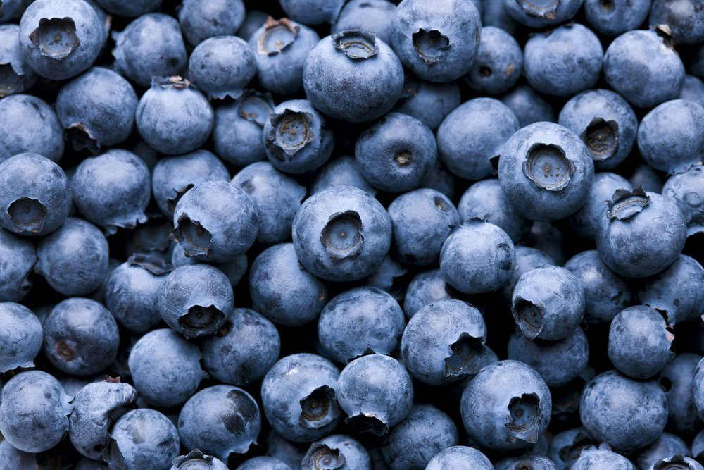 Close-up of delicious fresh blueberries filling the frame