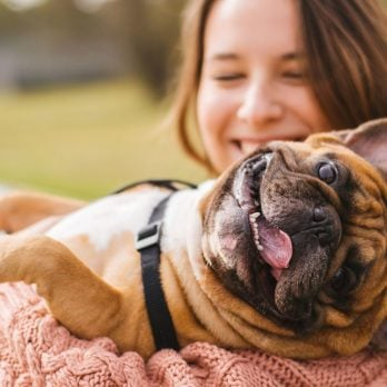 This is the New Pet-Pampering Capital of Canada