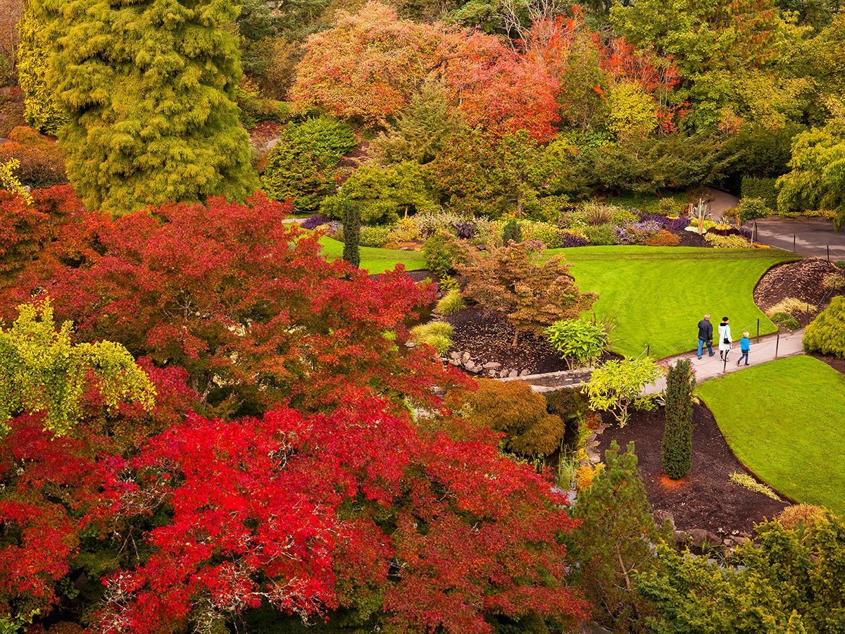 Fall colours in Vancouver - Queen Elizabeth Park