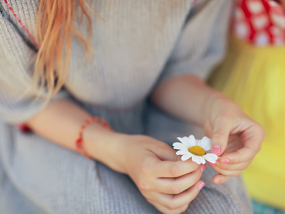Woman's hand holding chamomile flower