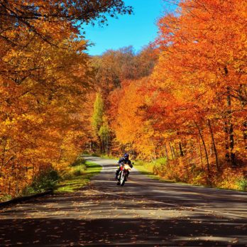 Fall's Gold: 10 Beautiful Orange-Hued Photos from Across Canada