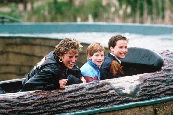 Princess Diana, Prince Harry and Prince William as kids