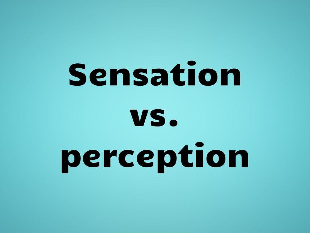 Sensation vs. perception