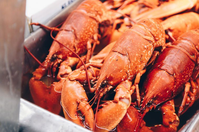 lobsters ready to be cooked