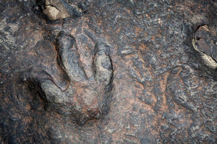 dinosaur footprints in kalasin, thailand