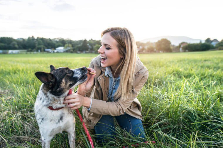 Beautiful young woman with dog in green sunny nature