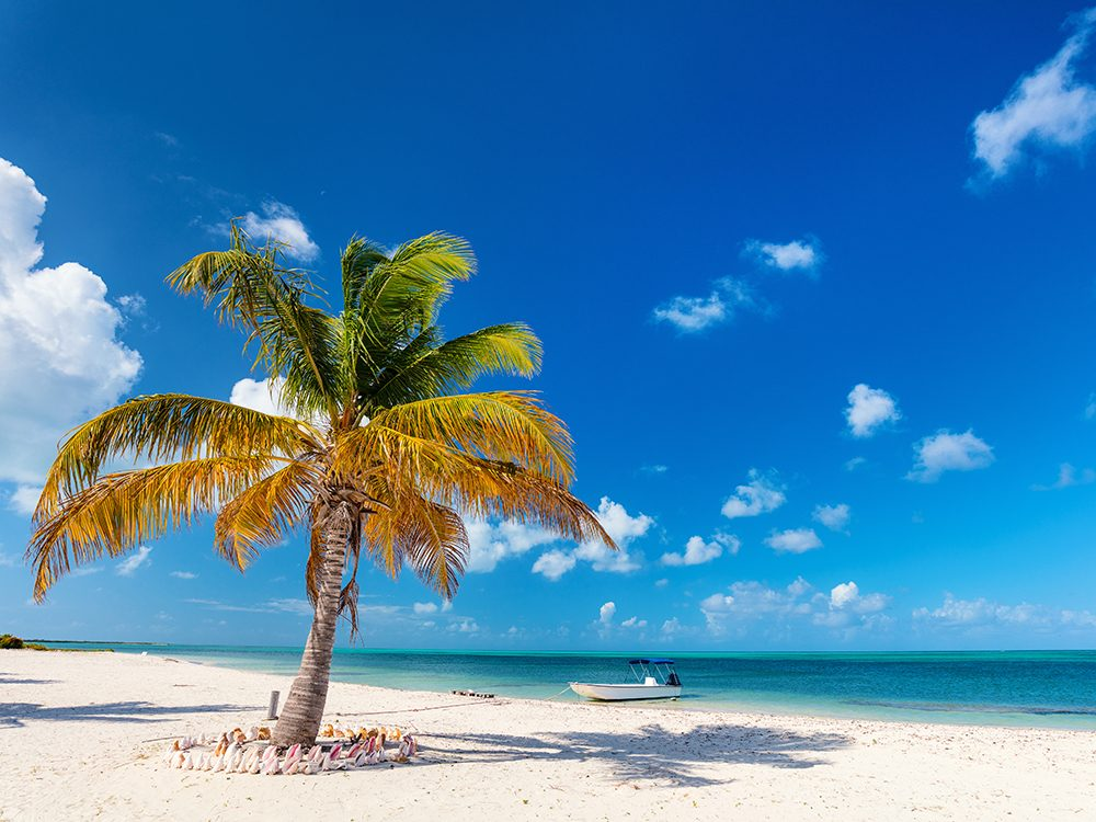 Small islands: Barbuda