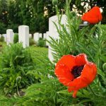 "The Story Behind ""In Flanders Fields"""