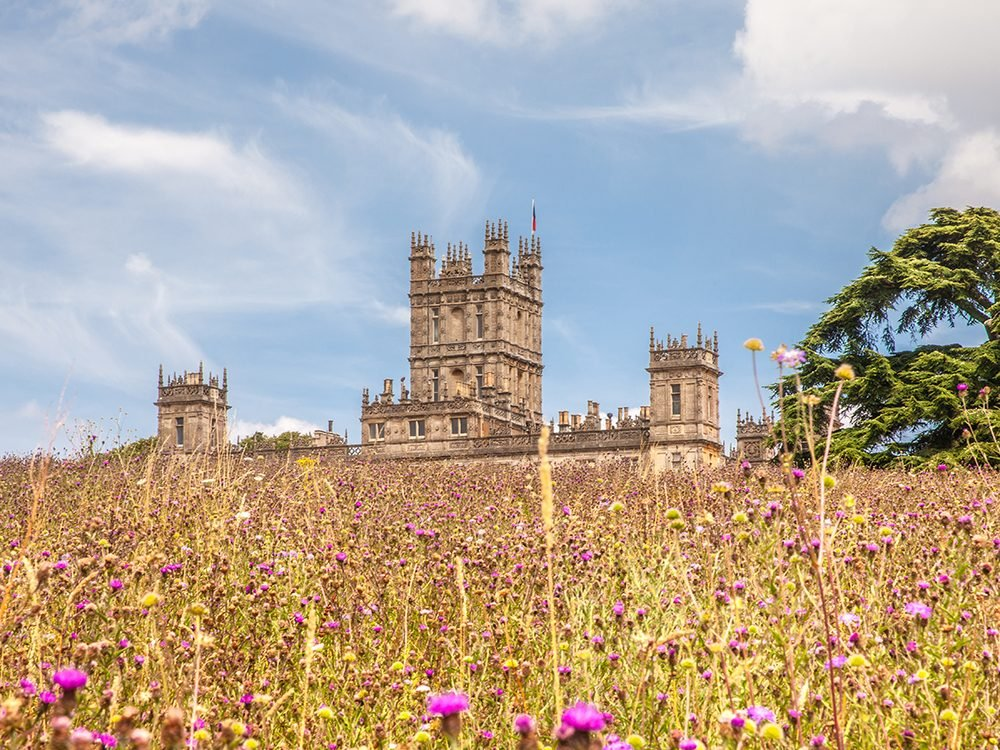 Best Downton Abbey quotes (Highclere Castle)