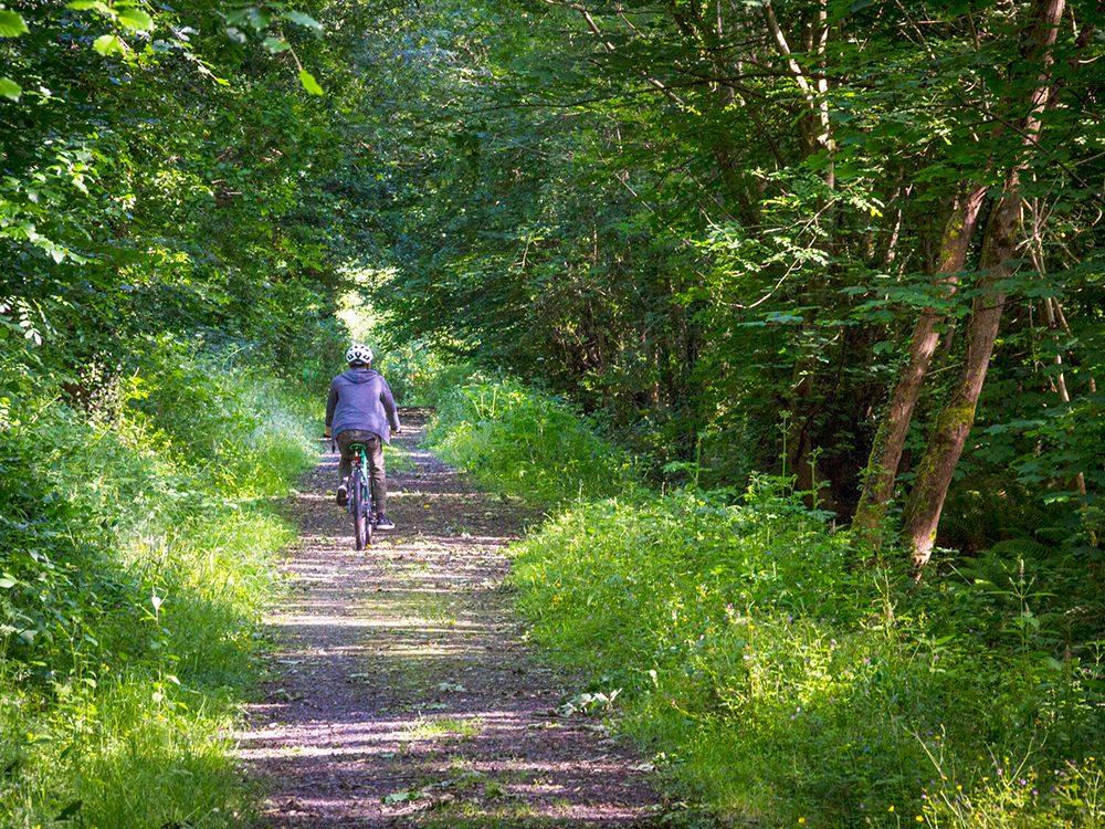 Things to do in Ireland: Mountain Biking in Killykeen