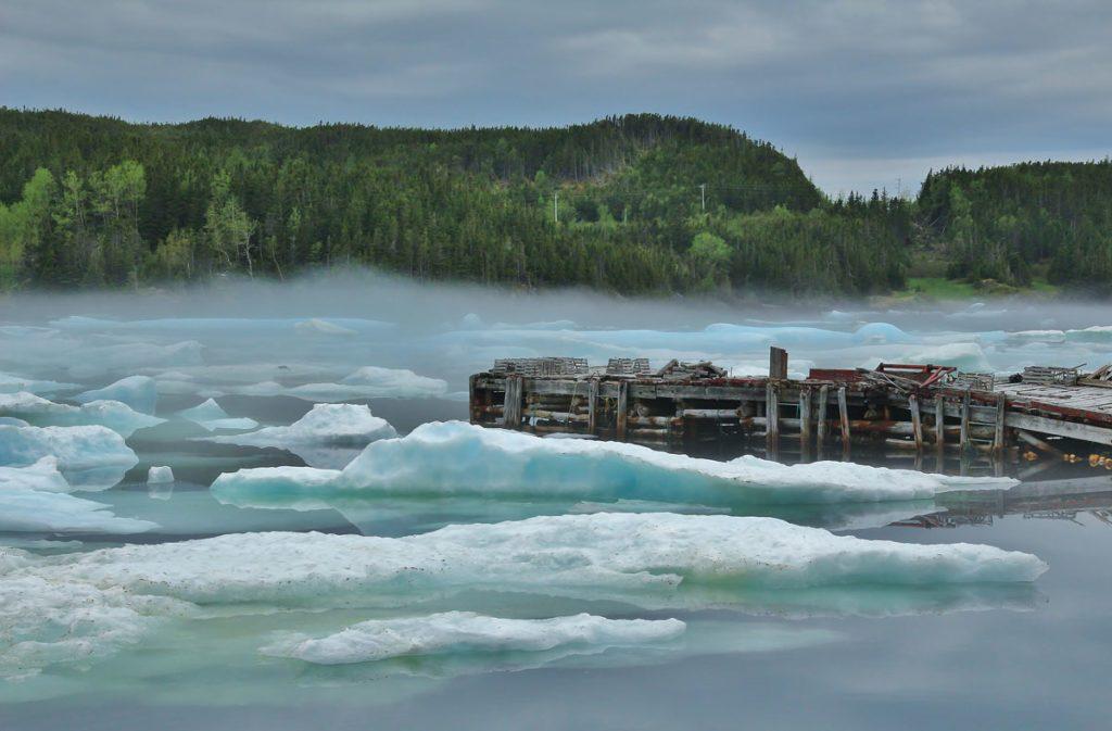 Harbor in Bonavista, Newfoundland