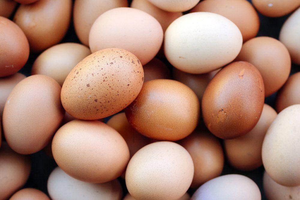 Egg, Chicken Egg