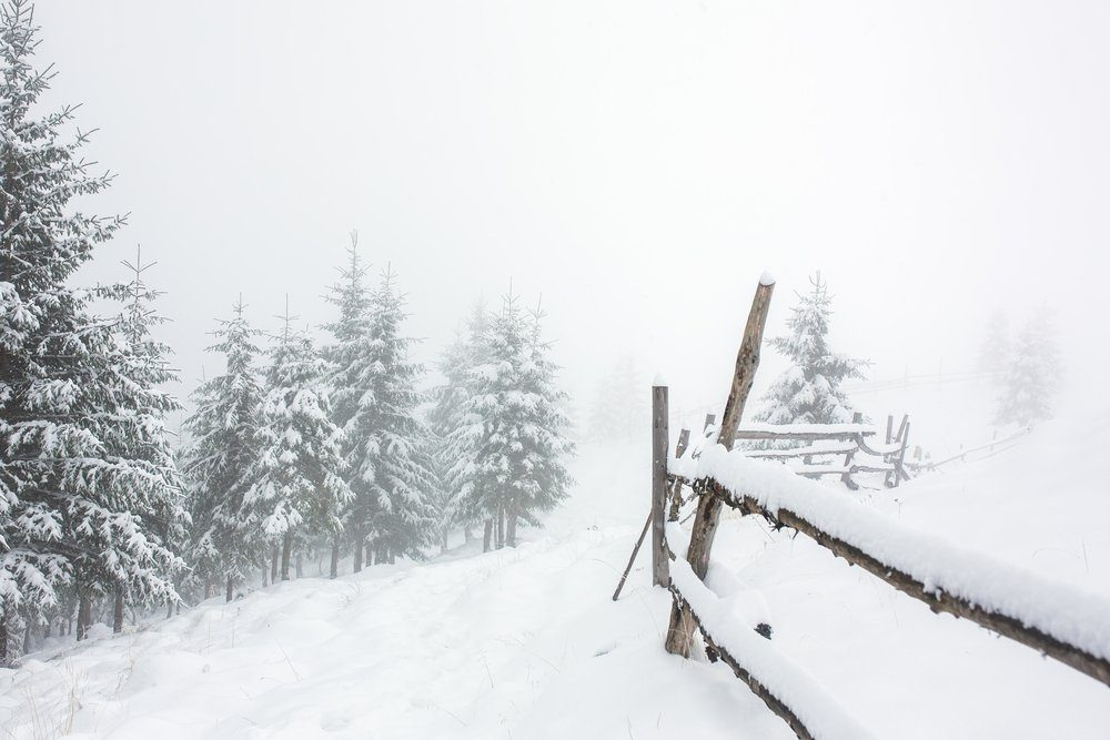 Beautiful winter landscape with snow covered trees and fence