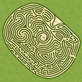 The World's Hardest Maze Only Geniuses Can Solve