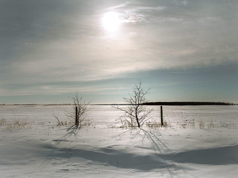 Canadian winter sky