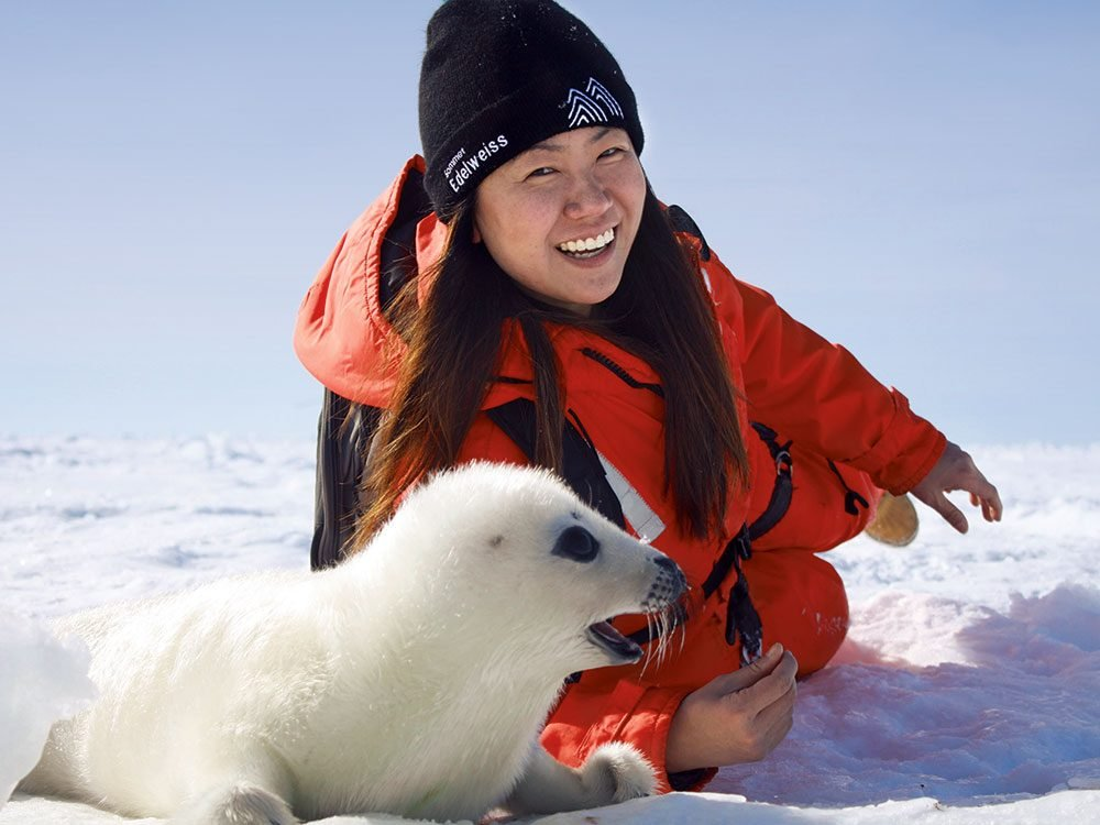Kate with harp seal