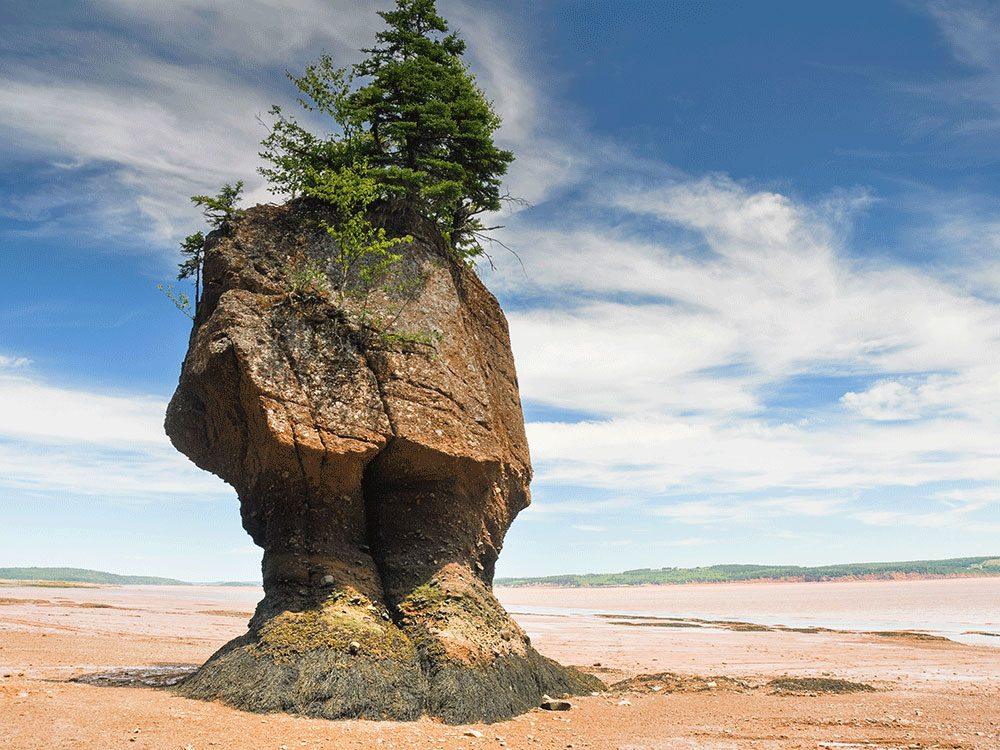 Living in Canada - Bay of Fundy