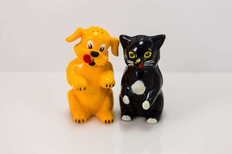 plastic dog and cat salt and pepper shakers set