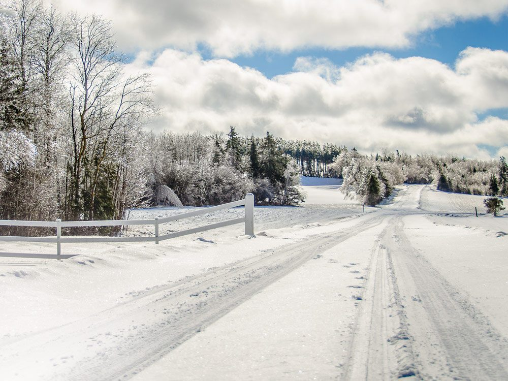 Farm road in winter