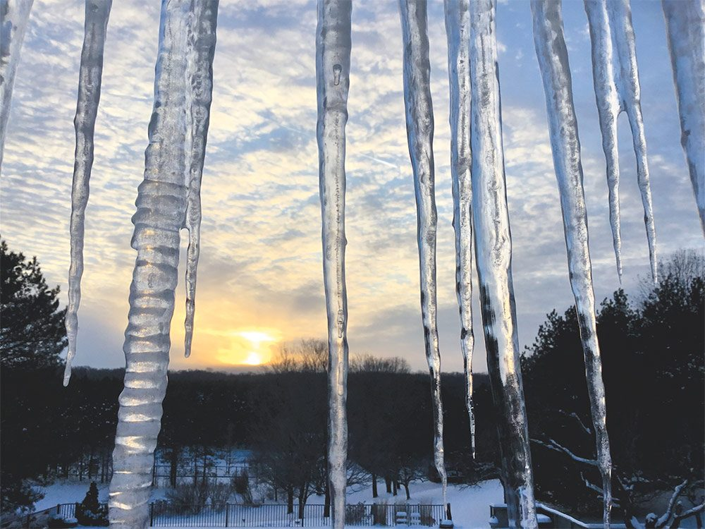 Sunset shining through icicles