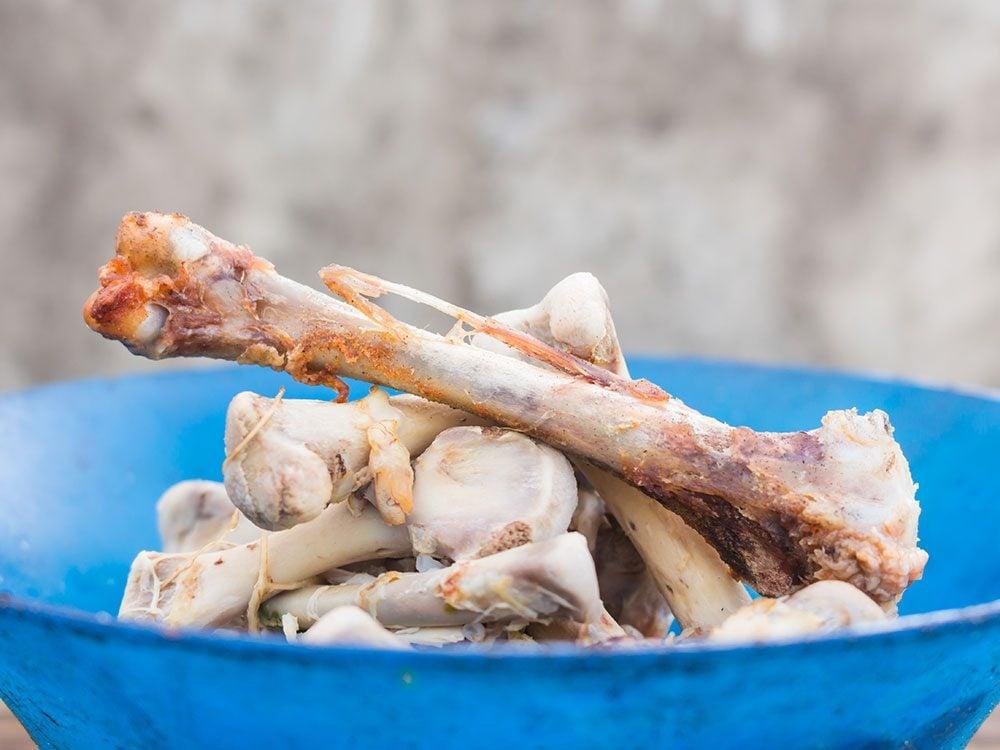Health risks for pets - bones