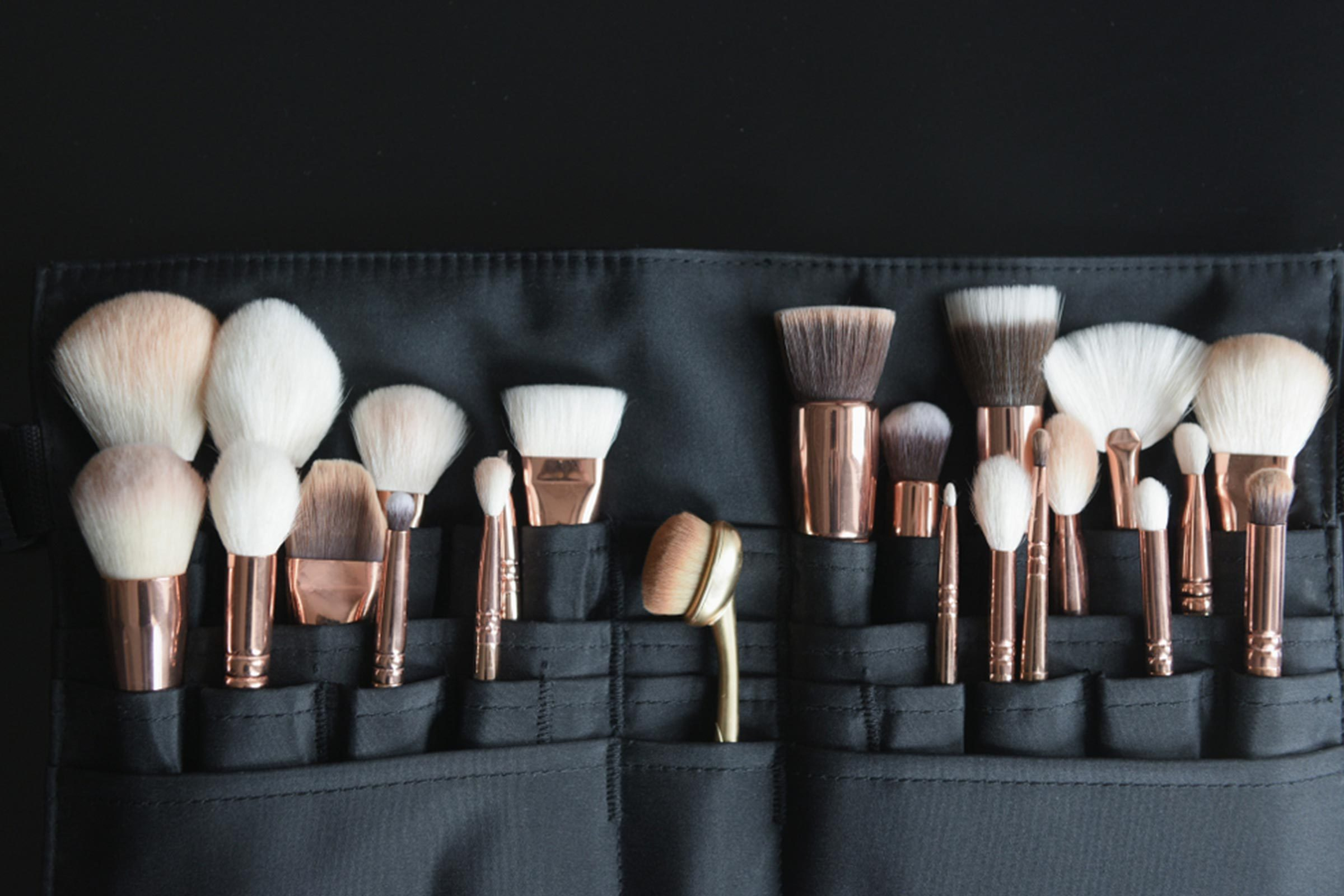 makeup brushes bag