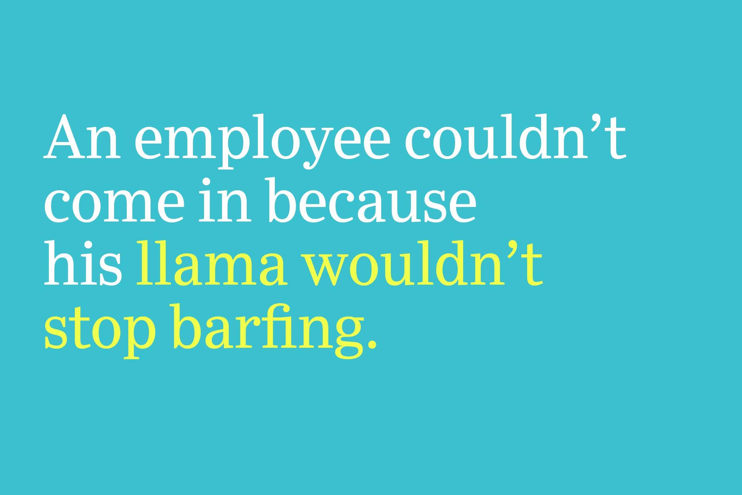 llama wouldn't stop barfing