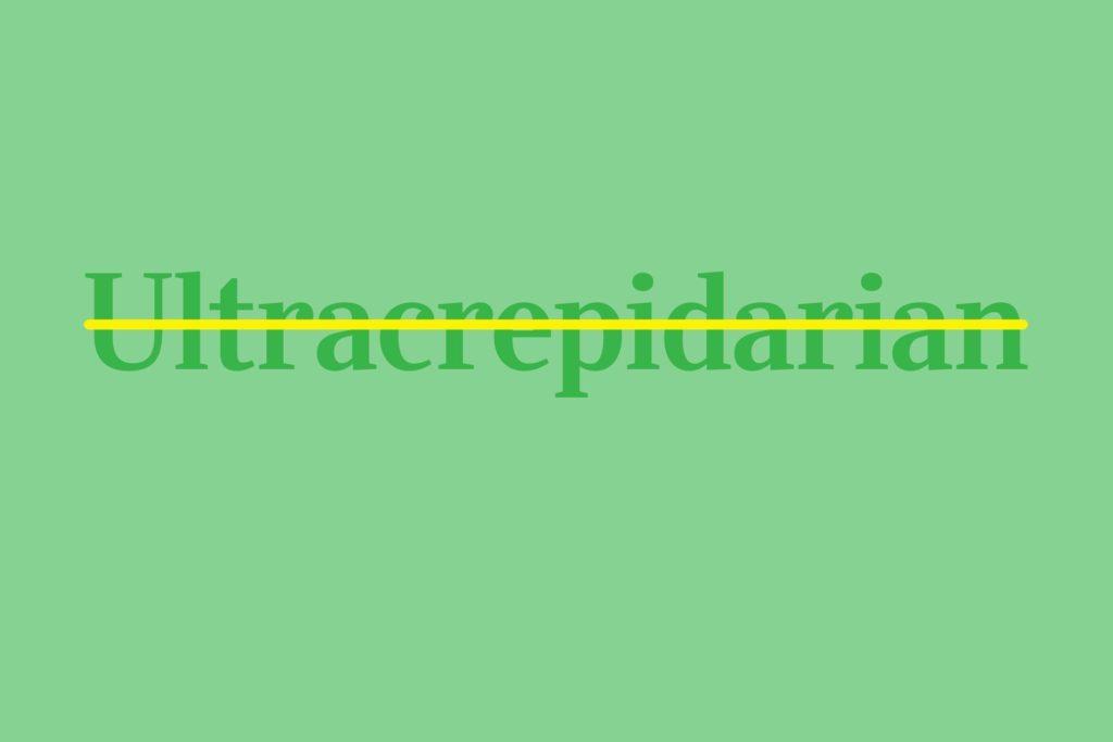 Ultracrepidarian