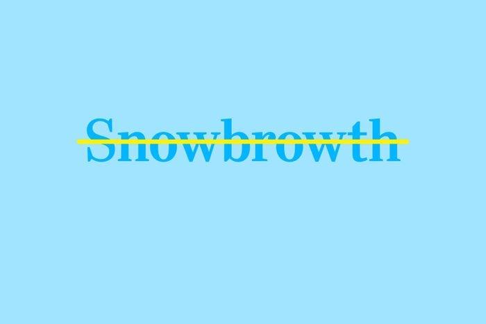 snowbroth