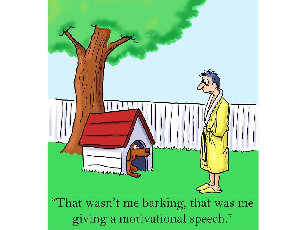20 Dog Cartoons to Make Every Owner Chuckle | Reader's Digest