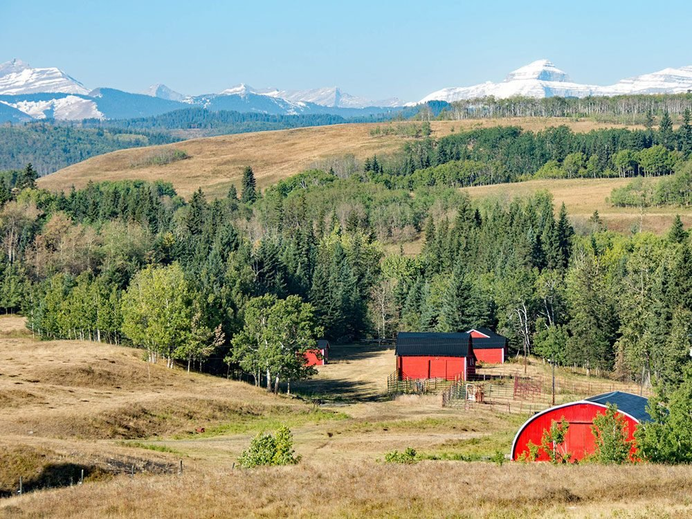 Highwood Pass - eastern foothills