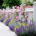 25 Simple Landscaping Ideas For the Perfect Garden