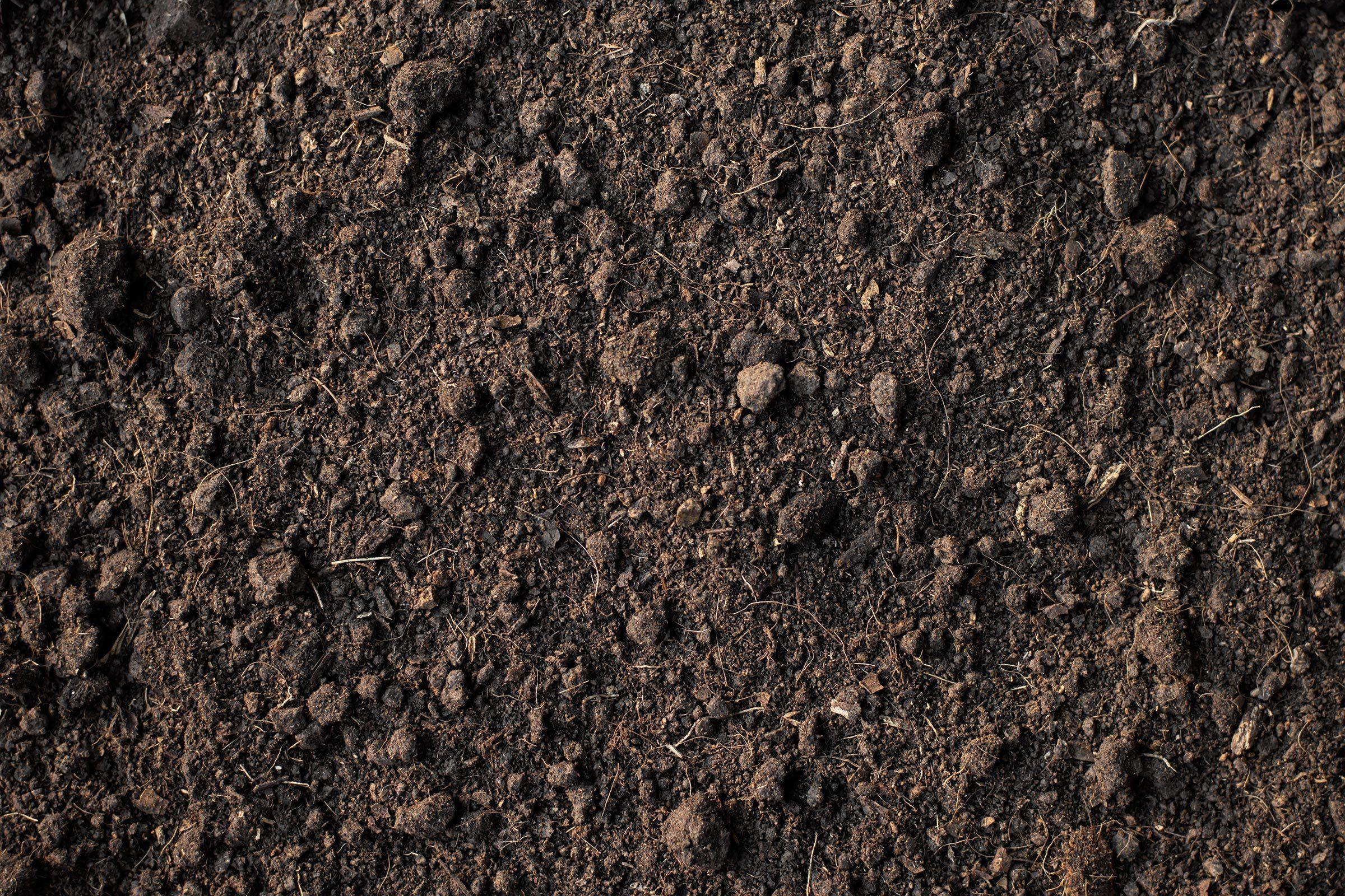 dirt soil