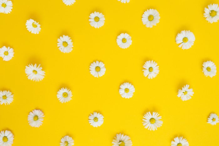 how to improve your memory every day - flowers