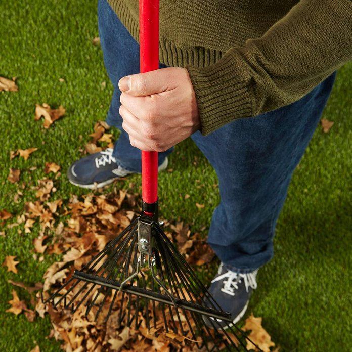rake fall leaves