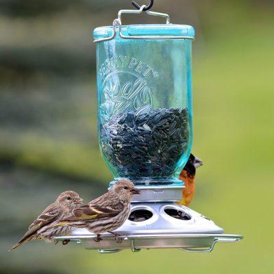 Uses for Mason jars - Mason jar bird feeder