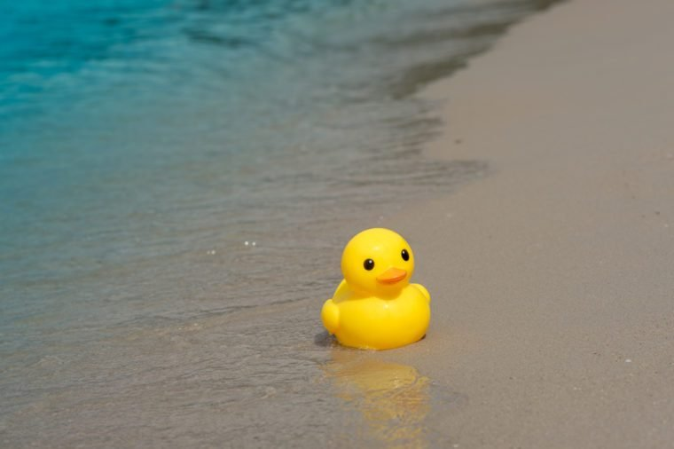 rubber duck_ocean facts