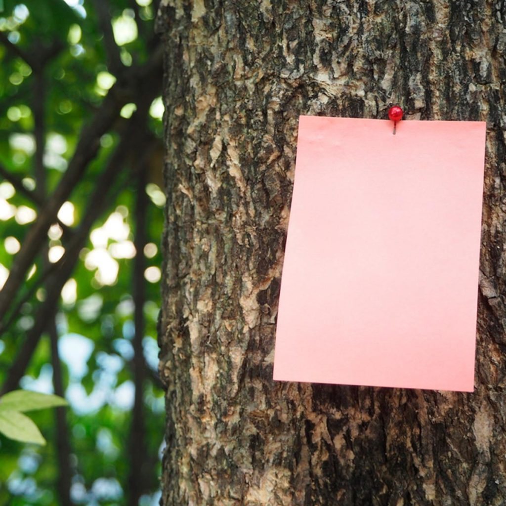 Note nailed on tree