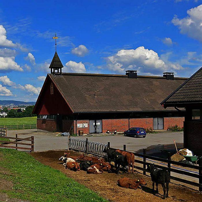 Bygdø-Royal-Farm-Oslo