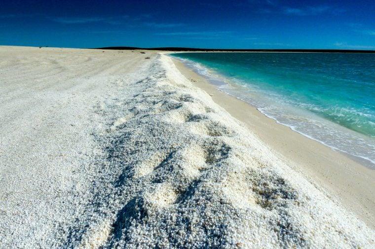 Shell Beach in Western Australia
