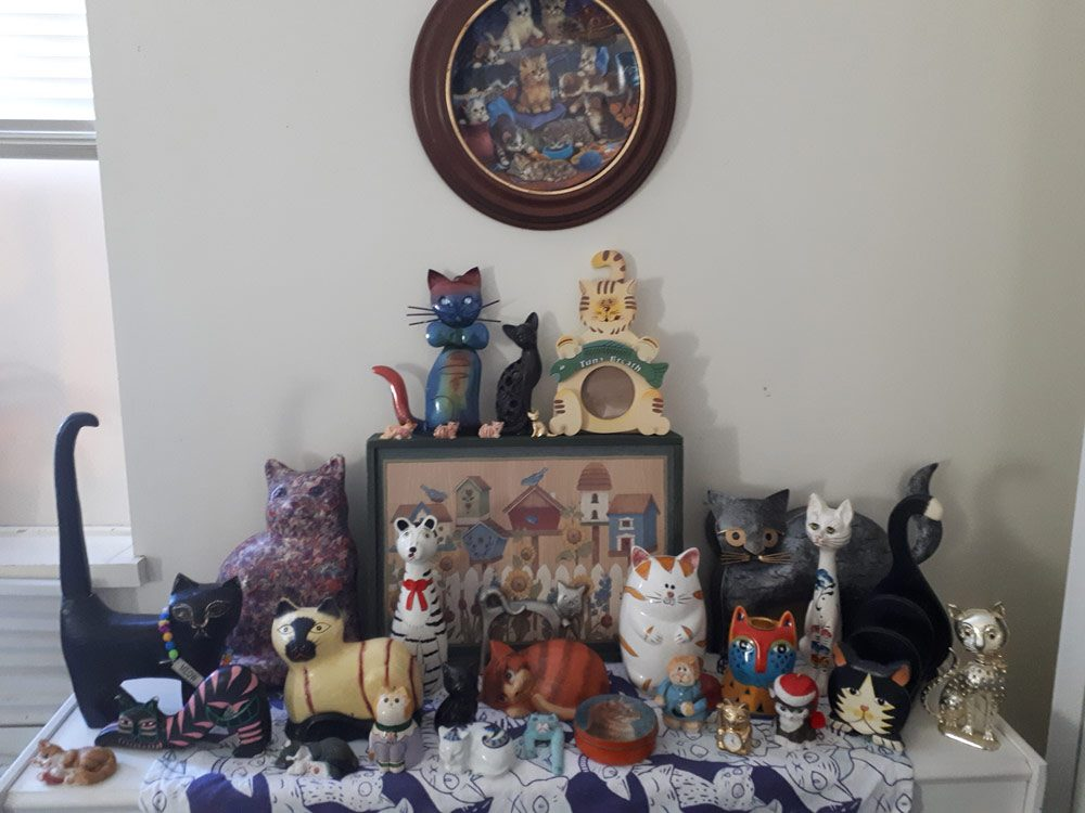 Cat-themed memorabilia